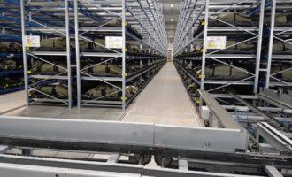 Optimalizace logistiky prostřednictvím Smart Industry řešení EMANS